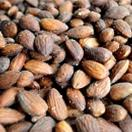 Salted Roasted Almonds 4lb